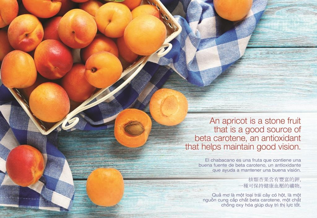 06 Jun - Apricots (w Text & Trans) - Copy