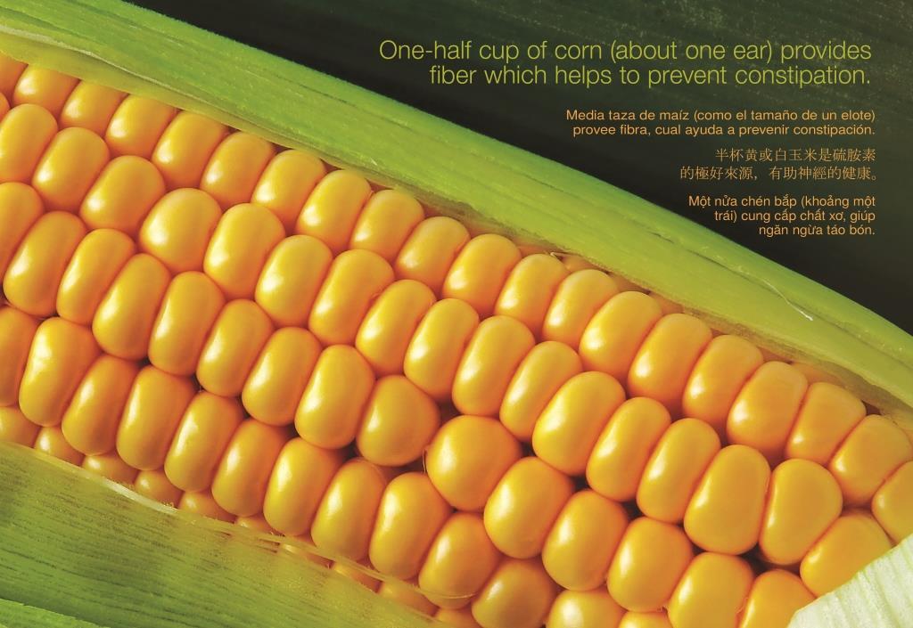 09 Sep - Corn (w Text & Trans) 3